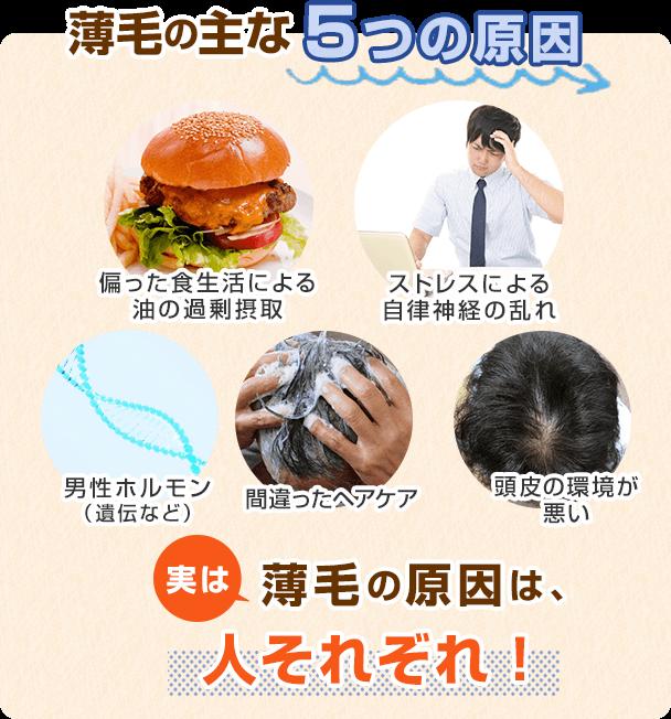 薄毛の主な5つの原因…①偏った食生活による油の過剰摂取②ストレスによる自律神経の乱れ③男性ホルモン(遺伝など)④間違ったヘアケア⑤頭皮の環境が悪い