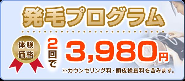 発毛プログラム体験価格:2回で3980円(カウンセリング料・頭皮検査料を含みます)